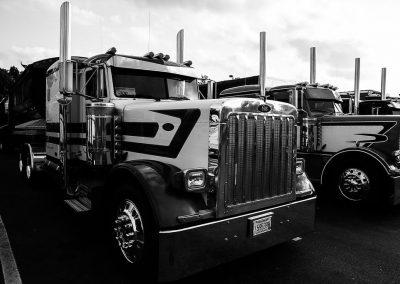 TruckShow2015-308