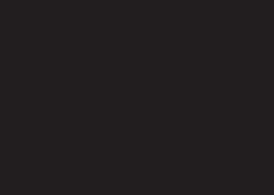 Dynaflex web logo